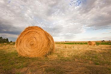 Straw bale on field
