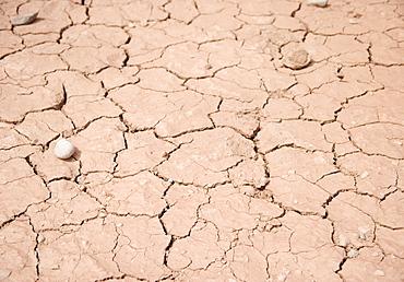 Cracked earth at Arches National Park Moab Utah USA