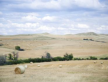 Hay bales southern Montana USA