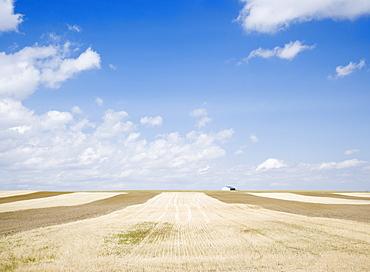 Farmland Billings Montana USA