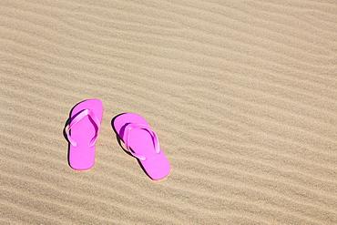 Oregon, Florence, Pink flip-flops on sand dune