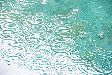 Raindrops on falling on pond surface