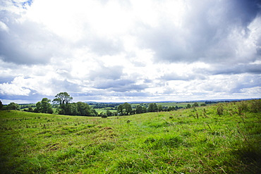 Ireland, County Westmeath, Landscape with clouds