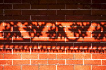 Shadow of railing on brick wall, USA, Louisiana, New Orleans