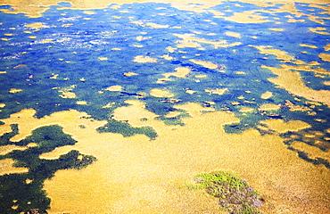 Aerial view of marsh
