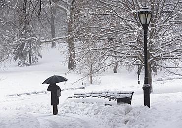 Person walking in snowy park