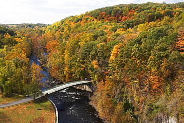 USA, New York, Croton, bridge in forest
