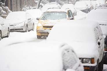 USA, New York City, street with cars covered with snow