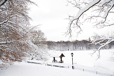 USA, New York City, Central Park in winter