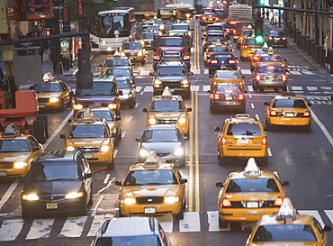 USA, New York City, Manhattan, Traffic stopped at zebra crossing on 42nd street