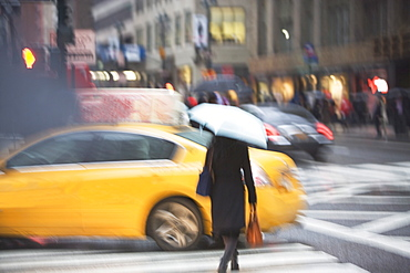 USA, New York state, New York city, pedestrian with umbrella on zebra crossing