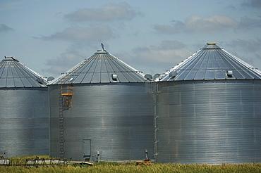 Row of grain storage silos