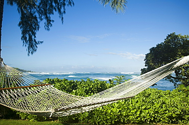 Hammock with ocean in background, Oahu, Hawaii, United States