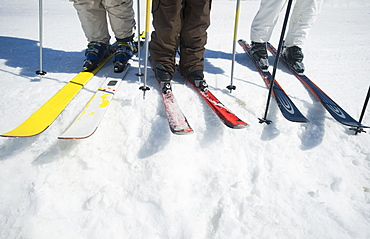 People standing on skis