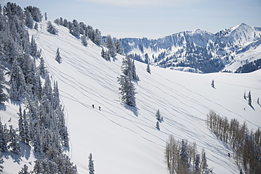 Skiers on mountain, Wasatch Mountains, Utah, United States