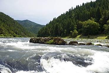 Scenic view of whitewater river