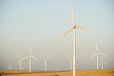 Rows of windmills on wind farm