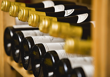 Close up of wine bottles