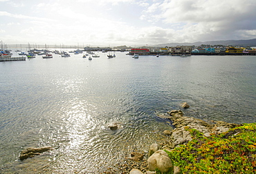 View of tranquil bay on sunny day, Monterey, California