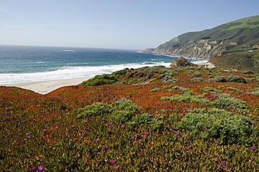 Tranquil seaside, Big Sur, Monterey, California
