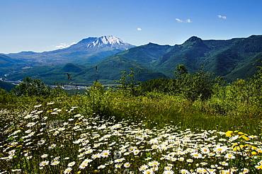 Mount St Helen's, Mount St Helen's, Washington, USA