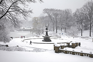 Central Park at winter, New York City