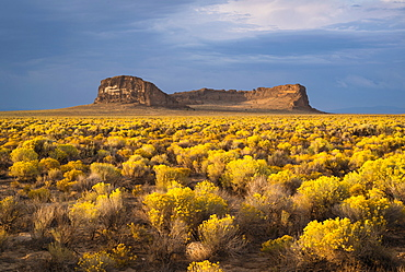 View of Fort Rock, USA, Oregon, Fort Rock