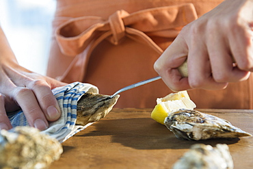 Woman shucking oysters