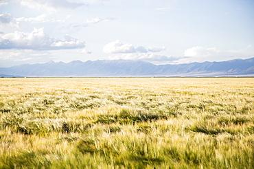 Scenic view of landscape, Colorado, USA