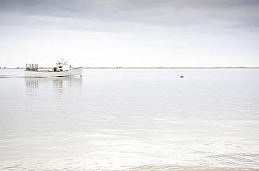 Boat in bay, Chatham, Massachusetts, USA