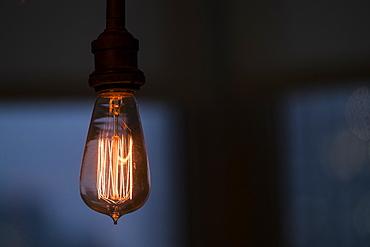 Illuminated light bulb