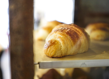 Close-up of croissant in bakery