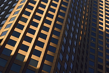 Full frame shot of office building, USA, Massachusetts, Boston, Financial District