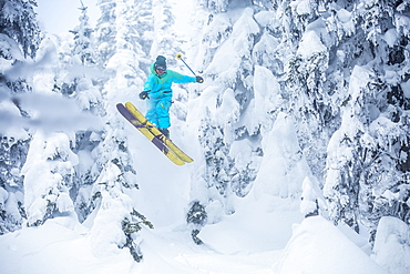 Skier jumping in forest, USA, Montana, Whitefish