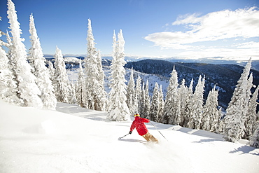 Man skiing downhill, USA, Montana, Whitefish