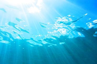 Sunbeam shining underwater