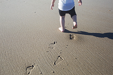 Girl (18-23 months) walking on sand