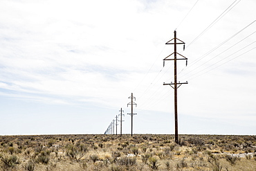 Electricity pylons in desert, Colorado