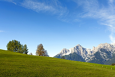Austria, Salzburger Land, Maria Alm, Meadow with mountains in distance