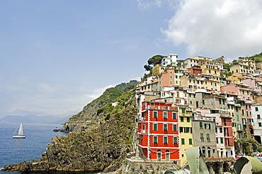 Italy, Cinque Terre, Riomaggiore, Multi colored buildings on hill by sea