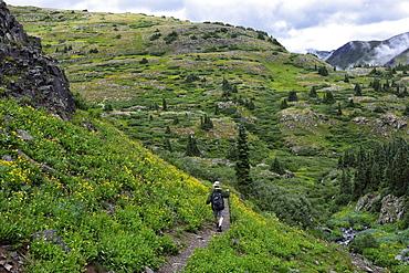 USA, Colorado, Man walking down mountains in San Juan National Forest