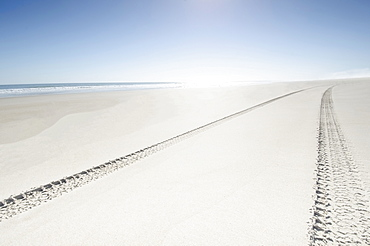 Tire tracks on empty beach