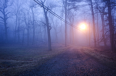 USA, New Jersey, Empty dirt road at dawn
