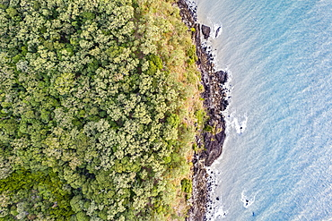 Australia, Queensland, Rainforest by sea (Drone)