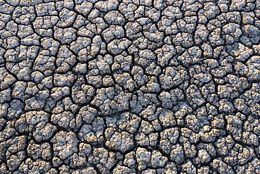 Overhead view of cracked desert