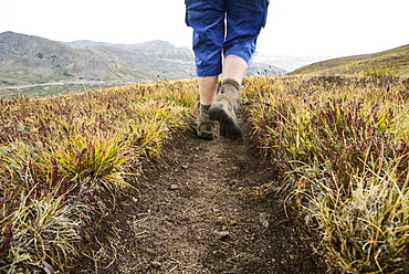 Legs of woman hiking Loveland Pass in Colorado, Loveland Pass, Colorado, USA