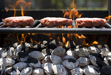Hamburgers cooking on grill