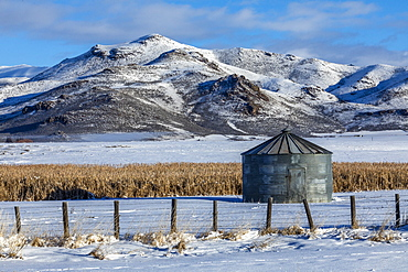Grain silo in field by mountain during winter