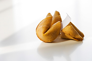 Close up of fortune cookies