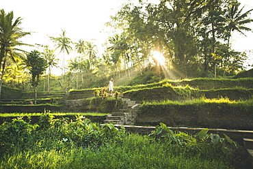 Woman wearing white dress on terraced rice paddies in Bali, Indonesia